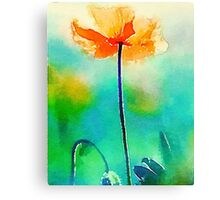California Poppy Watercolor Fine Art Canvas Print