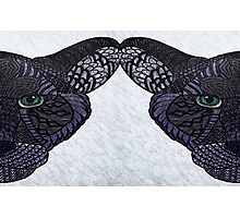 Double panther Photographic Print