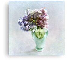 Endless Summer Hydrangea Still Life #2 Canvas Print