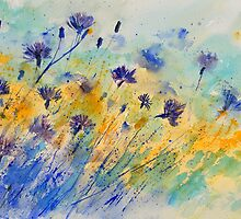 watercolor cornflowers by calimero