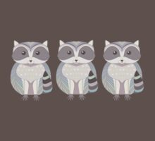 Raccoon Triplets Kids Clothes