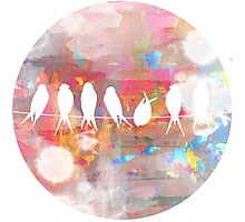 Technicolor Birds on Wire  Photographic Print