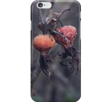Dying Nature iPhone Case/Skin