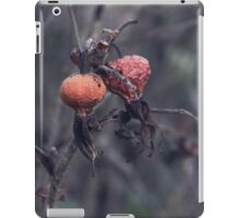 Dying Nature iPad Case/Skin