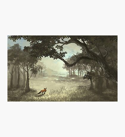 Fox in the Clearing Photographic Print