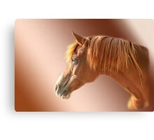 Arabian Portrait Canvas Print