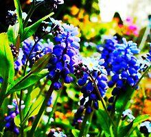 Pop Art Flowers by evhiggins