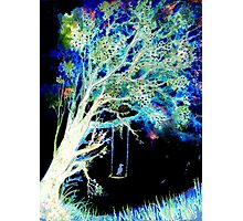 Moonlight Swing - Trees Photographic Print