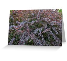 Purple tree branches with leaves pattern. Greeting Card