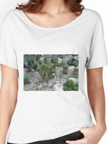 Cacti on gravel. Women's Relaxed Fit T-Shirt
