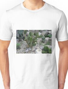 Cacti on gravel. Unisex T-Shirt