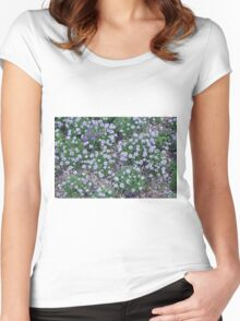Delicate small purple flowers. Women's Fitted Scoop T-Shirt