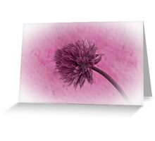 Single Chive Blossom  Greeting Card