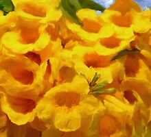 Golden Trumpet Tree Flowers - Ipe amarelo  by imagerially