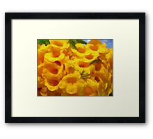 Golden Trumpet Tree Flowers - Ipe amarelo  Framed Print