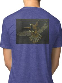 Hawk of Power Tri-blend T-Shirt