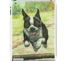 Leaping Boston iPad Case/Skin