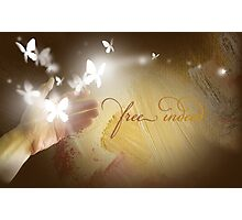 Free Indeed Glowing Butterflies Photographic Print