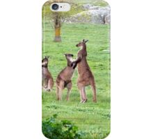 'SHALL WE DANCE!' Kangaroos stand tall. 'Arilka' Mount Pleasant. iPhone Case/Skin