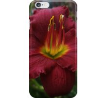 One good reason to love summer iPhone Case/Skin