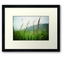 In the Meadow - JUSTART © Framed Print