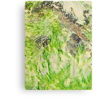 Lime Seaweed Metal Print