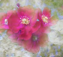 Roses Fade...Yet Memories Remain by Susan Werby