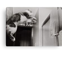 Moments With Max #2 Canvas Print