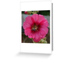 Collection Point Bee Greeting Card