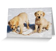 """Golden Retriever Puppies First Winter"" Greeting Card"