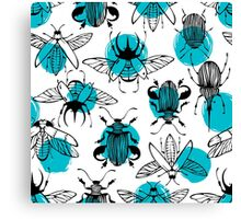 Exotic beetles Canvas Print