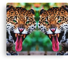 Angry and Free Canvas Print
