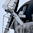 Fulwell Windmill by Andrew Pounder