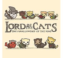 Lord Of The Cats Photographic Print