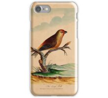 Lord's Entire new system of ornithology, or, Oecumenical history of British birds  iPhone Case/Skin