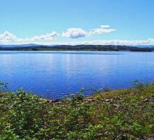 Sugarloaf Reservoir Park by Sama-creations