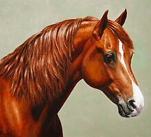 Chestnut Morgan Horse by csforest