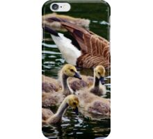 The Young And Restless iPhone Case/Skin