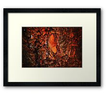"""Red Hot Embers"" abstract on bark Framed Print"