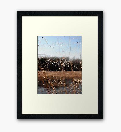 Simple Pleasures of Nature Framed Print