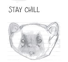 STAY CHILL 101 Photographic Print