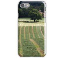Hayfield at Great Salkeld iPhone Case/Skin