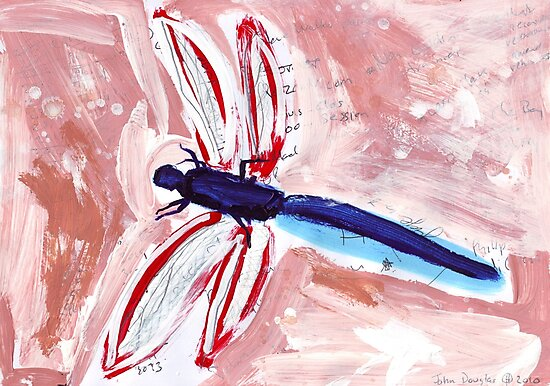Dragonfly by John Douglas