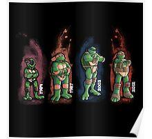 Turtles evolution Poster