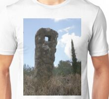 Natural Sculpture Unisex T-Shirt