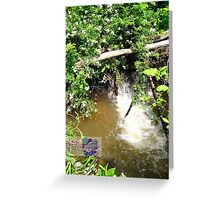little spring waterfall Greeting Card
