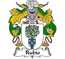 Rubio Coat of Arms/ Rubio Family Crest Photographic Print