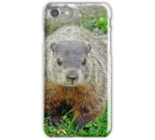 Ground hog iPhone Case/Skin