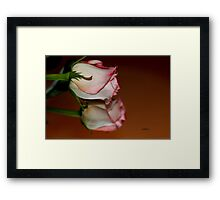 Who is the Fairest? Framed Print