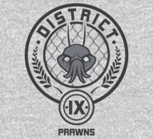 Prawn District (HG Parody) Kids Clothes